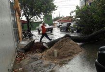 São Pedro da Aldeia tem queda de árvore por conta de temporal desta quarta