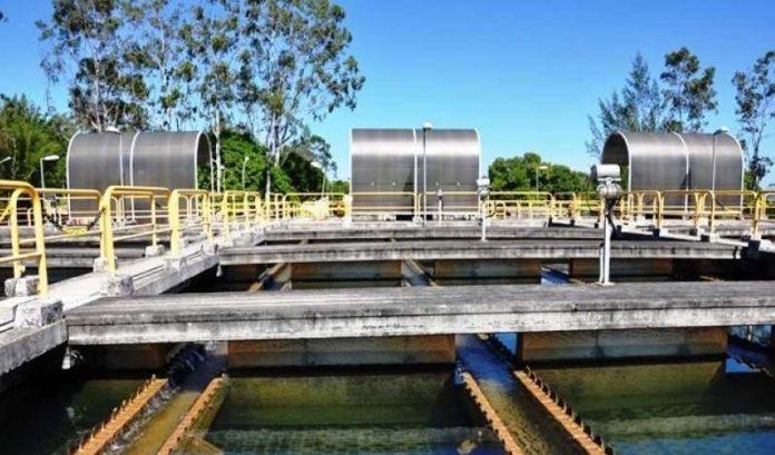 Prolagos afirma que proliferação de algas é a causa de mau cheio na água da região