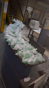 Ao todo, 2.500 pinos de cocaína foram apreendidos.