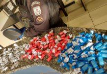 Cargas de drogas são apreendidas em Araruama e Cabo Frio