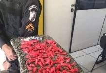 Material apreendido no Morro da Coca-Cola, nessa quarta (20). Foto: PM/Divulgação