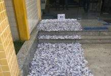 Informações apontaram local onde drogas estavam. Foto: Divulgação/ Polícia Militar