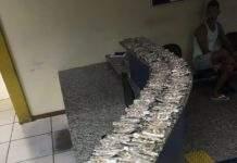 Ação aconteceu após denúncia anônima. Prejuízo ao tráfico de drogas foi de cerca de R$ 6.300. Foto: PM/Divulgação