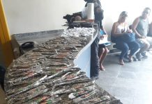 Segundo a PM, suspeito já tinha passagens criminais anteriores por furto e tráfico. Foto: PM/Divulgação