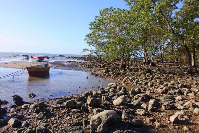 Área de Proteção Ambiental do Mangue de Pedras é criada em Búzios