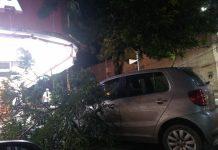 Agentes da Defesa Civil Municipal continuam em alerta e equipes da Comsercaf trabalham no recolhimento dos galhos. Foto: Defesa Civil