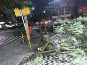 Estacionamento da Padria Remmar, em Cabo Frio. Foto: Defesa Civil/Diulgação